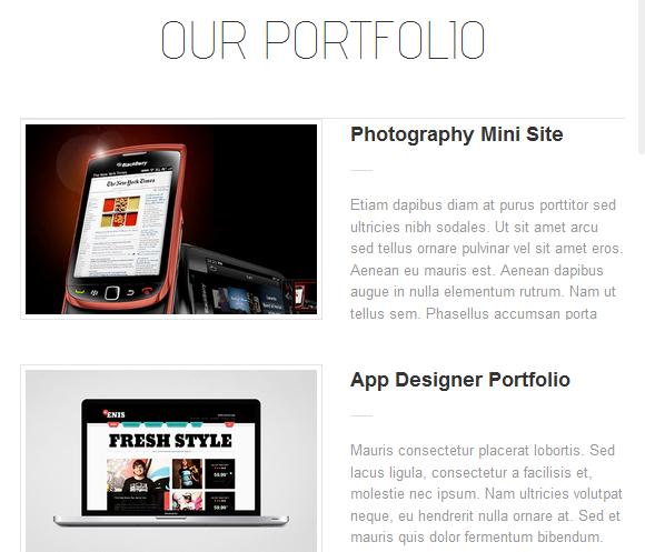 The Portfolio Page
