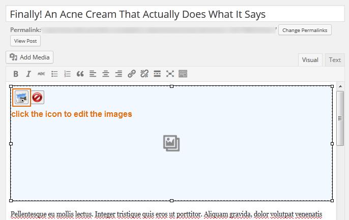 premium_wordpress_themes_dw_timeline_pro_edit_gallery