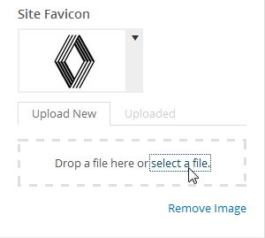 Site Favicon Settings