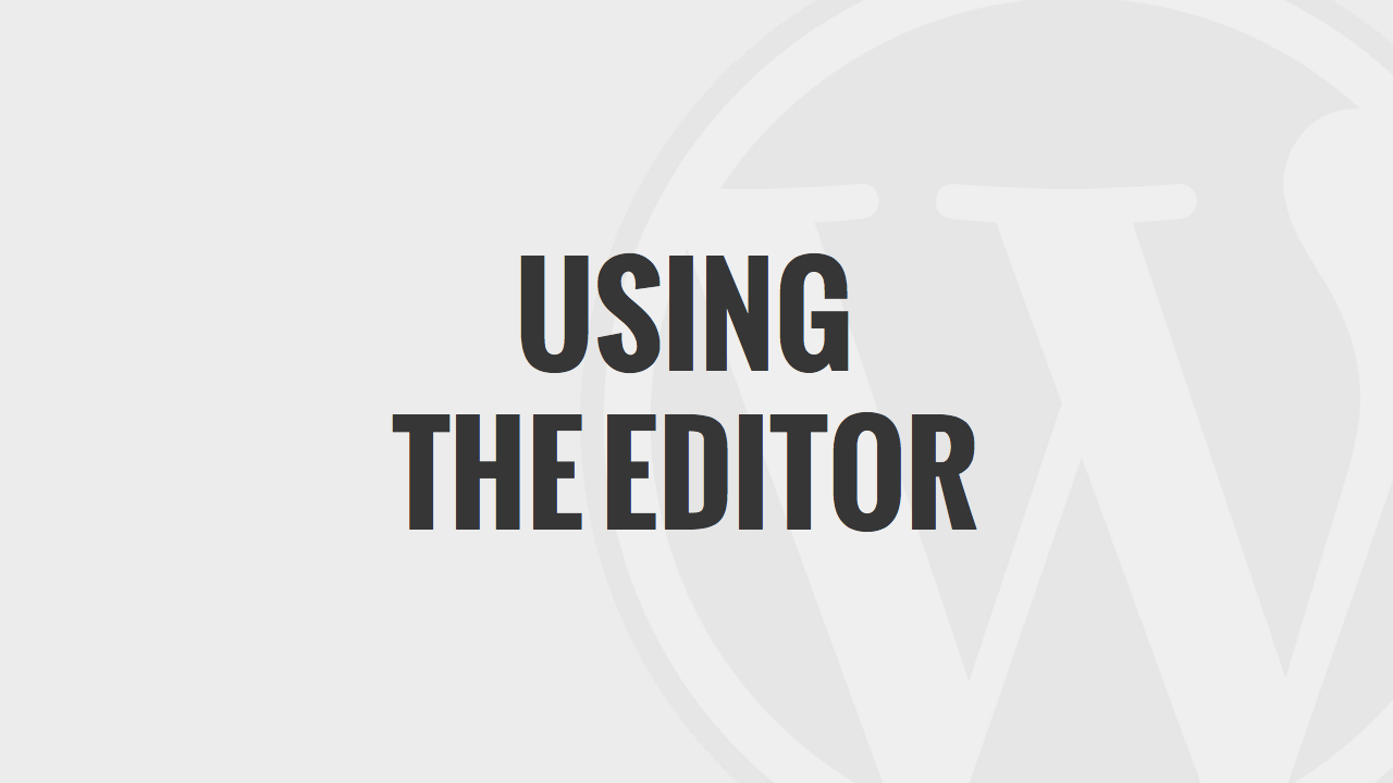 Using the WordPress Editor