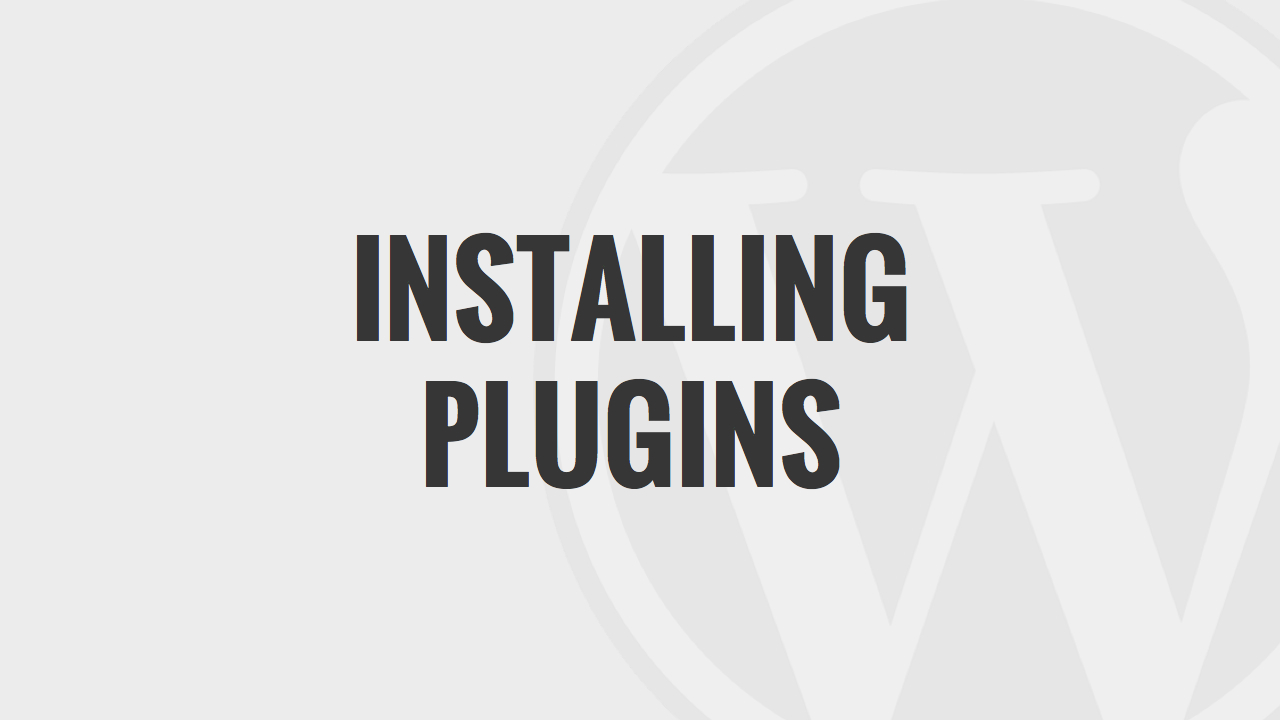 Installing Plugins WordPress